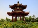 Pagoda dzikiej gęsi