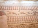 dsc_0420-paphos-miasto-rzymskie-ok-ii-willa-dionizosa