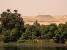 Brzeg Nilu