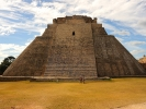 Uxmal Piramida Wrozbity Po prawej czworokat mniszek