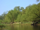 DSC_8608 rzeka