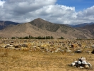 Cholpon Ata miejscowość widok na jez Issyk-Kul i rysunki na kamieniach