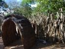 Zulusi wejście do wioski