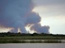 Saint Lucia Estuarium - Pożar buszu