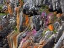 Rezerwat Tsitsikamma - Ocean indyjski, ujście rzeki sztormowej