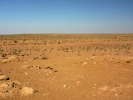 Pustynia Kyzyl-Kum do Chiwy