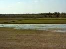 Droga do Chiwy pola ryzowe